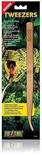 Exo Terra Futterpinzette aus Bambus