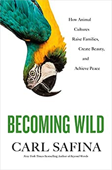 Becoming Wild: How Animal Cultures Raise Families, Create Beauty, and Achieve Peace by [Carl Safina]
