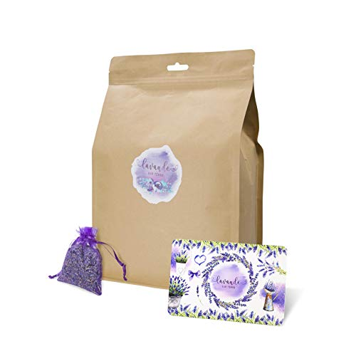 D'vine Dev French Lavender Sachets for Drawers and Closets Fresh Scents, Home Fragrance Sachet, Pack of 36, Purple Sachets