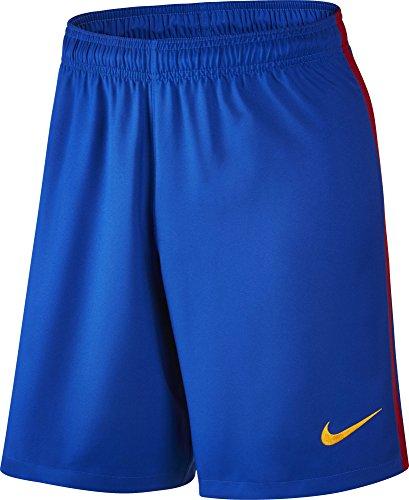 Nike FCB M Ha3G Stadium - Short Linie F.C Barcelona Herren, Farbe Blau, Größe L
