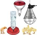 Motisi Zootecnici Riflettore portalampada per Riscaldamento Pulcini, Lampada infrarossi 150 Watt + abbeveratoio