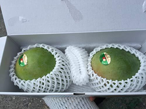 みんなを元気に!!早期予約 宮古島産マンゴーキャンペーン☆おかげさまで20周年☆ 2020年 緑の甘いマンゴー「訳あり品」 2玉(900g〜1,2kg) 白箱入 【送料無料】