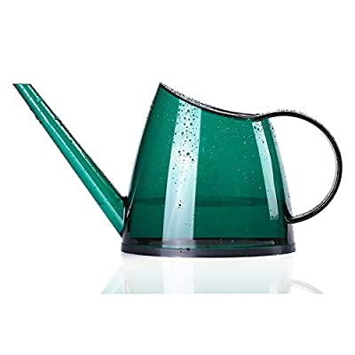 Indoor Plant Watering Can, Small Watering Can for Indoor Plants, Flowers, Succulents 40oz (Green)