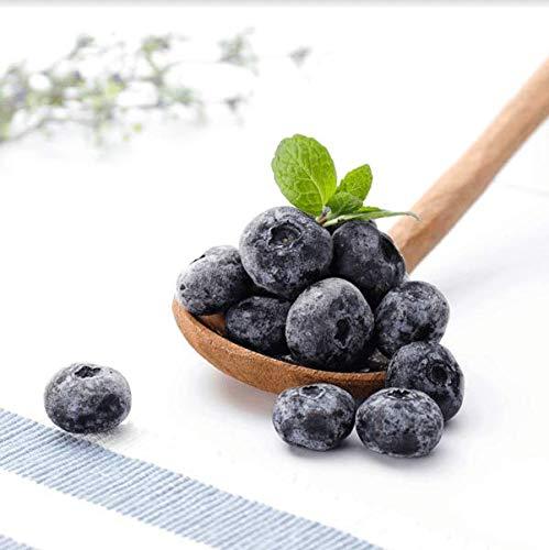 ブルーベリー 冷凍 完熟 「森のサファイア」 長野県産 高級果実 農薬不使用 農園から直送 (500g)