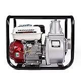 AMC Motopompa a scoppio con motore 4 tempi fino a 1000 litri al minuto per giardinaggio ed...