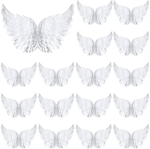 Angel wings party decorations