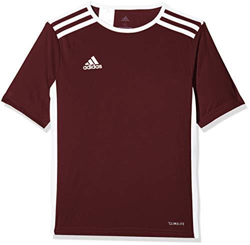 adidas Entrada 18 JSY T-Shirt, Hombre, Maroon/White, S