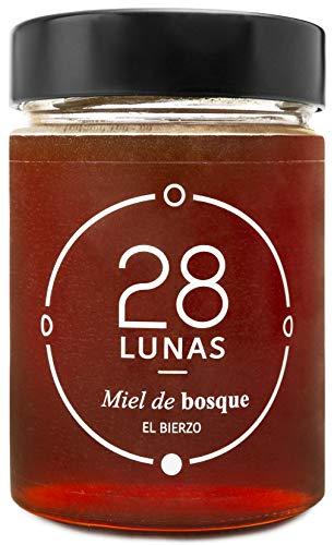28Lunas Miel de Bosque - 100% Natural Pura, Cruda, Artesana, 500gr - Origen El Bierzo, España