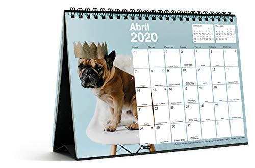Miquelrius 28062 - Calendario de Sobremesa A5 para escribir Perros & Gatos 2020 Castellano
