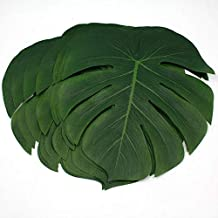 giant palm leaves