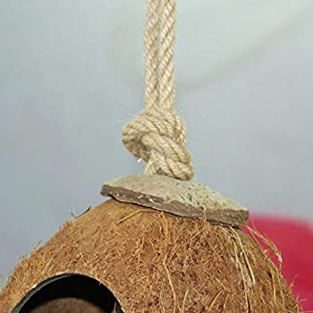 WZWZ Coquille De Coco Naturelle pour Animaux De Compagnie Nid D'oiseau Cabane Mangeoire en Cage Perroquet Perruche Jouet Maison