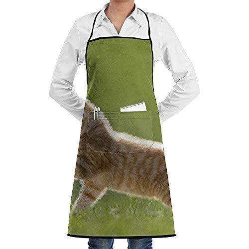 Katrine Store Tablier de cuisine de cuisine de cuisine de faction de chat et de papillon Tabliers de chef imperméables de poche réglables