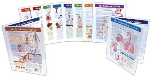 NewPath Learning Human Body Visual Learning Guide Set, Grade 6-10