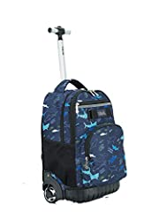 At least 30lb bearing with high-strength aluminum alloy rod; Multifunction usage with Tilami armor bottom protection system Tilami personalized design of shoulder straps padded pocket make your wheeling time more convenient and fun Big storage capaci...