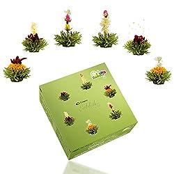 Creano Teeblumen Mix – Erblühtee Fruity Flavor zum Probieren - grüner Tee fruchtig aromatisiert (6 verschiedene Sorten Teerosen) Blooming Tea Tee Geschenk Weihnachten