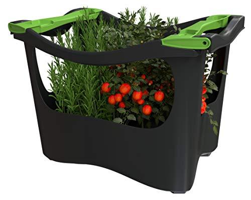 U-greeny Pflanzbox Hochbeet Gemüsebeet Anzuchttopf Pflanzregal für Balkon, Garten und Terrasse, integriertes Wasserablaufsystem, wetterfest, Anthrazit