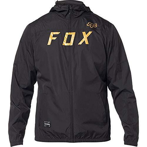 20766 Fox Casual Uomo