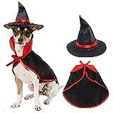 Winter Pet Halloween Cloak Hat Set Cat Dog Cosplay Ropa Halloween Masquerade Pet Performance Disfraz Black