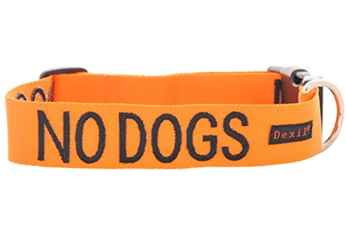 Dexil Limited NO Dogs Orange Color Coded S-M L-XL Buckle Dog Collar (Not Good with Other Dogs) Prevents Accidents by Warning Others of Your Dog in Advance (L-XL Collar 15-25