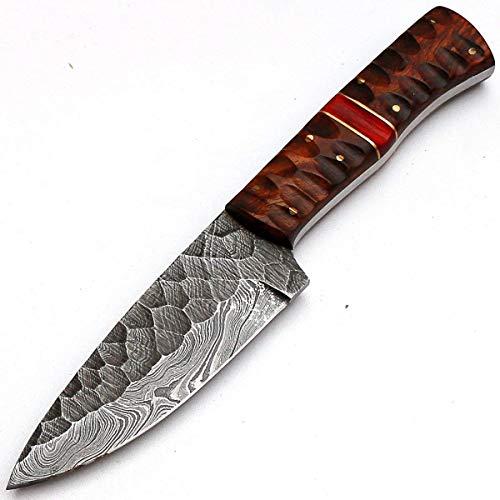 PAL 2000 Cuchillos de cocina de acero Damasco – 4 pulgadas aprox. Cuchillo de chef de acero Damasco – El mejor cuchillo de cocina hecho a mano Damasco con vaina Compra con confianza 8670
