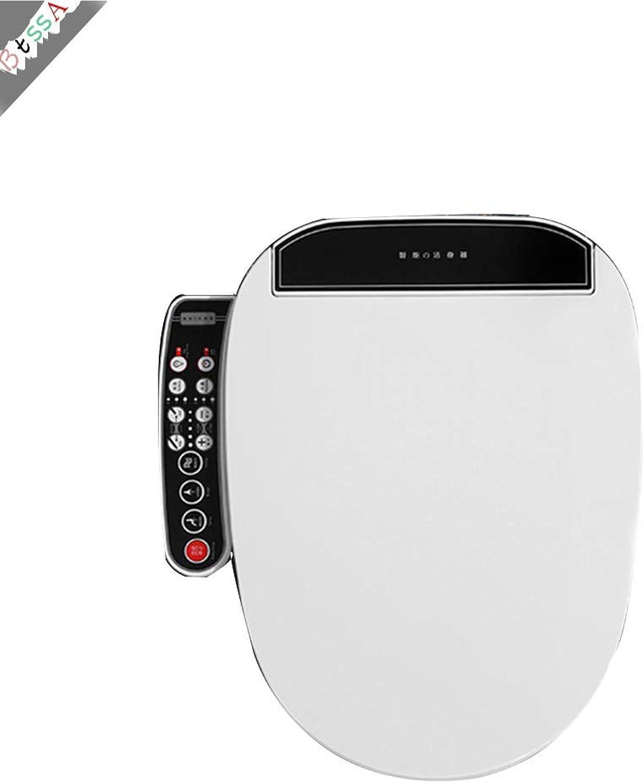 Dusch-WC 220V Bidet Klobrille mit Intelligente Fhn Massage Reinigung