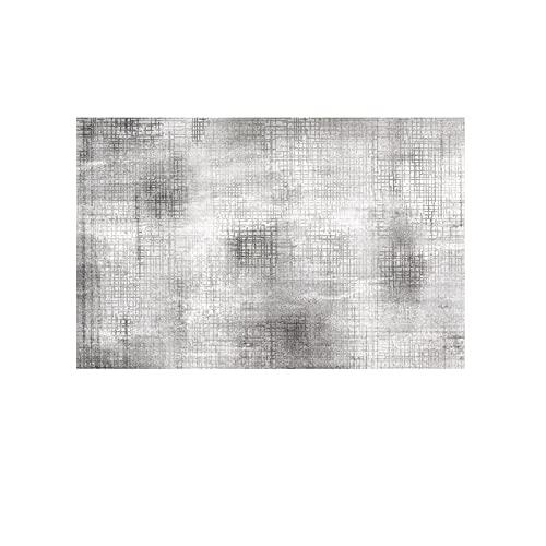 YLBH Alfombra gris nórdica, sofá de sala y mesa de café, alfombra grande simple y moderna, 200 x 300 cm B
