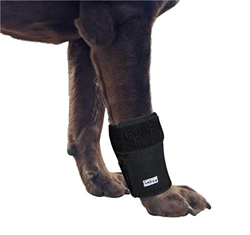 Labra Dog Canine Front Leg Compression Wrap Sleeve Protects Wounds Brace Heals and Prevents Injuries and Sprains Helps with Loss of Stability Caused by Arthritis (Small/Medium)