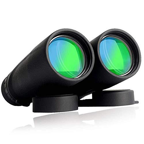 DKEE Binoculars Durable Professionelle Leistungsstarke Fernglas, Compact Teleskop Professionelle Vogelbeobachtung Fernglas, Wasserdicht Fogproof Teleskop Sightseeing Reisen Jagd Gaming (Größe: 10x42)