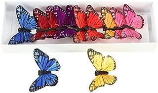 Shinoda Design Center 0165500211 12 Piece Bright Color Butterfly Decor, 3