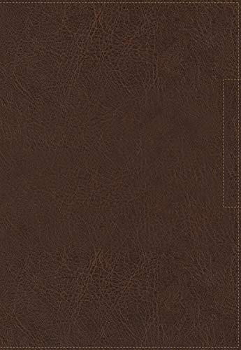NVI Santa Biblia, Lucado, Palabra de Aliento, Leathersoft, Café, Interior a dos colores (Spanish Edition)