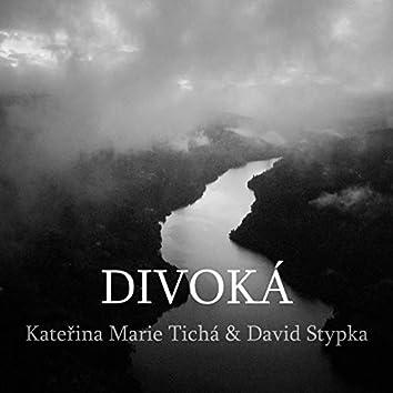 Divoká (Radio Edit)