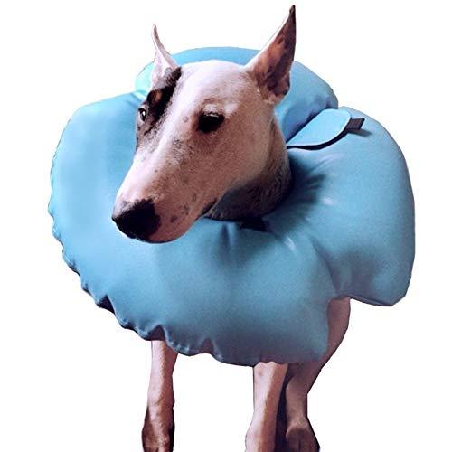 WGGTX Collares y Conos recuperación caninos Collar de Perro de protección Inflable del Gato de recuperación de heridas de Mascotas (Size : Medium)