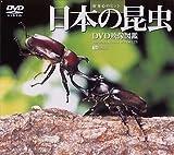 日本の昆虫 DVD映像図鑑[SDA-25][DVD]