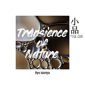소품 Vol.28 - Transience of Nature