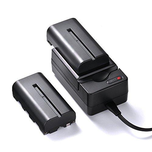 Tycka (2 pezzi) 2200mAh NP-F550/F570/F530 Batteria Li-ion di ricambio, con caricabatterie 5V/1A e cavo USB, per Videocamere Sony (diversi modelli), Ha
