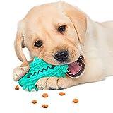 Trihedral-X Mascota Masticar Juguete Dientes Pasta de Dientes Cepillo de Dientes de Perro pegan Cactus (Color : Green, Size : 4#)