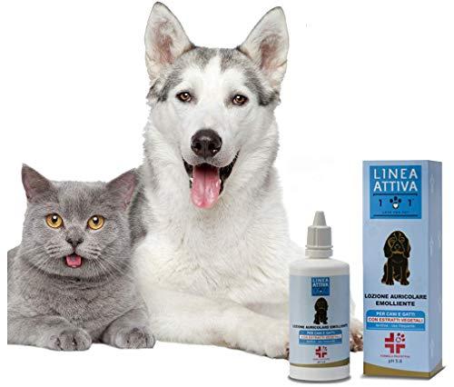 Limpiador para orejas natural y vegetal, 100 ml, contra malos olores, piruro, irritación, ácaros y tirones – para la limpieza auricular de perros y gatos – Línea 101