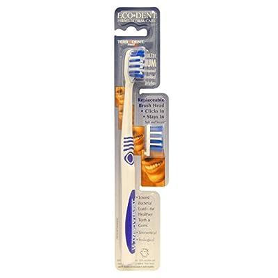 Eco-Dent - TerraDent Toothbrush Adult 31 Medium - CLEARANCE PRICED