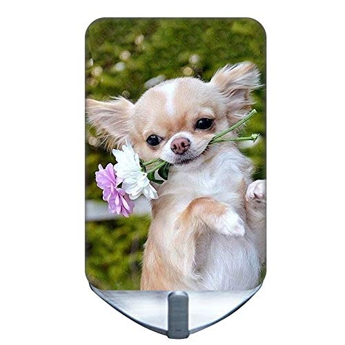 Guy Print Chihuahua 2 Beautify Compatible Robes Steel Hooks Noncorrosive Stee Choose Design 13-2