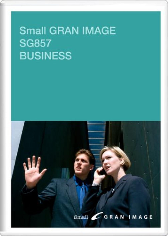 パリティプラス悪党SG857 スモールグランイメージ ビジネス BUSINESS(ロイヤリティフリー画像素材集)