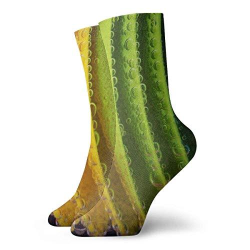 Kevin-Shop Bunte Teller Digital Wallpaper Adult Short Socks Nette Socken Yoga Wandern Radfahren Laufen Fußball Sport