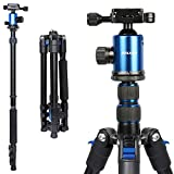 """Joilcan 60"""" Aluminum Travel Tripod,2-in-1 Compact Lightweight DSLR Camera Monopod Tripod with 360° Panorama Ball Head and Carry Bag"""