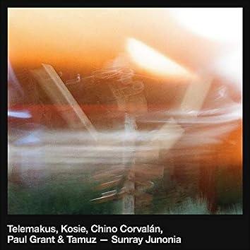 Sunray Junonia (feat. Kosie, Chino Corvalán, Paul Grant & Tamuz)