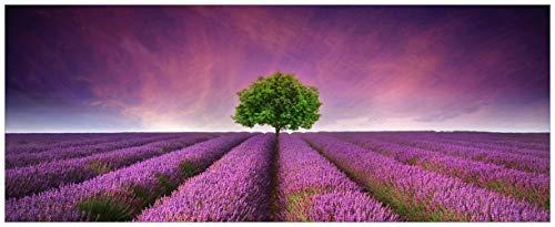 Wallario Glasbild Lila Blumenfeld - 50 x 125 cm in Premium-Qualität: Brillante Farben, freischwebende Optik