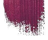 Be Extreme Halb-Dauerhafter Haar-Toner-Farbe 45 Dark Tulip - Ohne von Ammoniak, Ohne von Parabene...