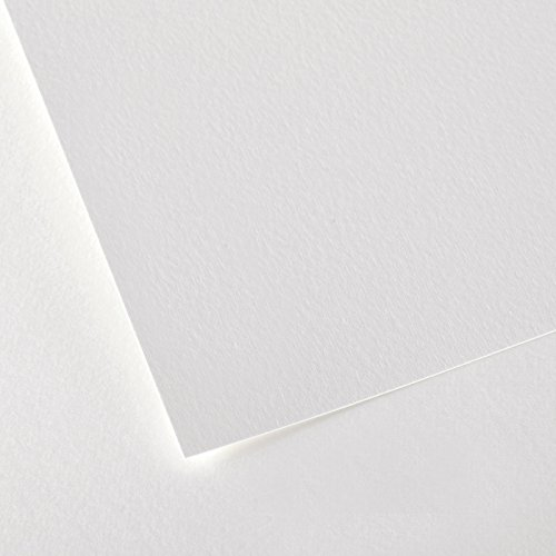 Canson Montval Watercolor Cold Press Art Paper, 22'X30' (10 Sheets)