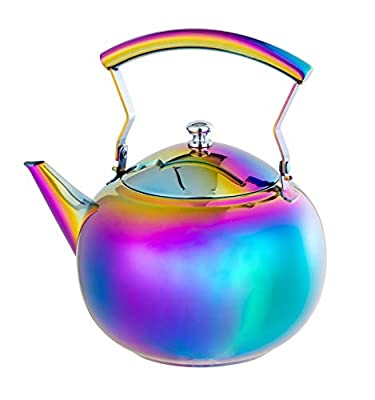 Rainbow Teapot with Infuser Loose Tea Leaf Stainless Steel Tea Pot 2 Liter for Water, Coffee, 2 Quart Tea Kettle for Stovetop Induction Stove Top Teakettle Removable Filter Basket Set