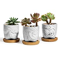 T4U 2.5 Inch Small Grey Ceramic Succulent Planter Pots with Bamboo Tray Set (Grey)