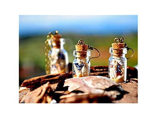 heng yuan tian cheng Seashell oorbellen, strand oorbellen, mini fles oorbellen, mini-terrarium, zee oorbellen, mini-fles, terrarium oorbellen, schelp oorbellen