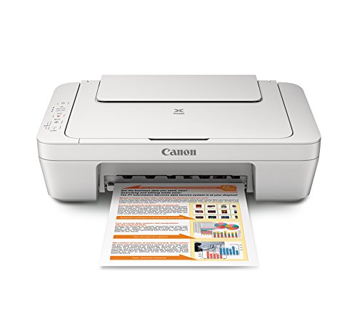 Canon MG2520 Color Photo Printer